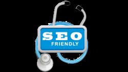 Build SEO Friendly Website