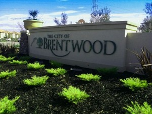 brentwood website design