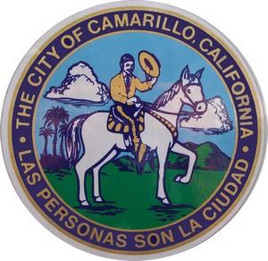 camarillo website design