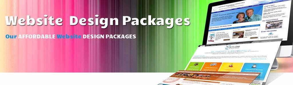 Professional Web Design Agency