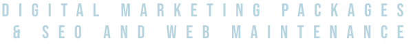 digital marketing packages seo and web maintenance